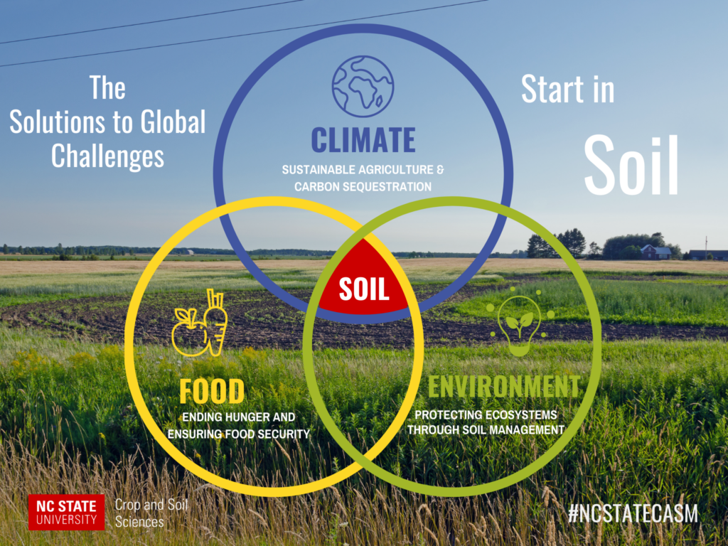 Global challenges intersect with soil venn diagram